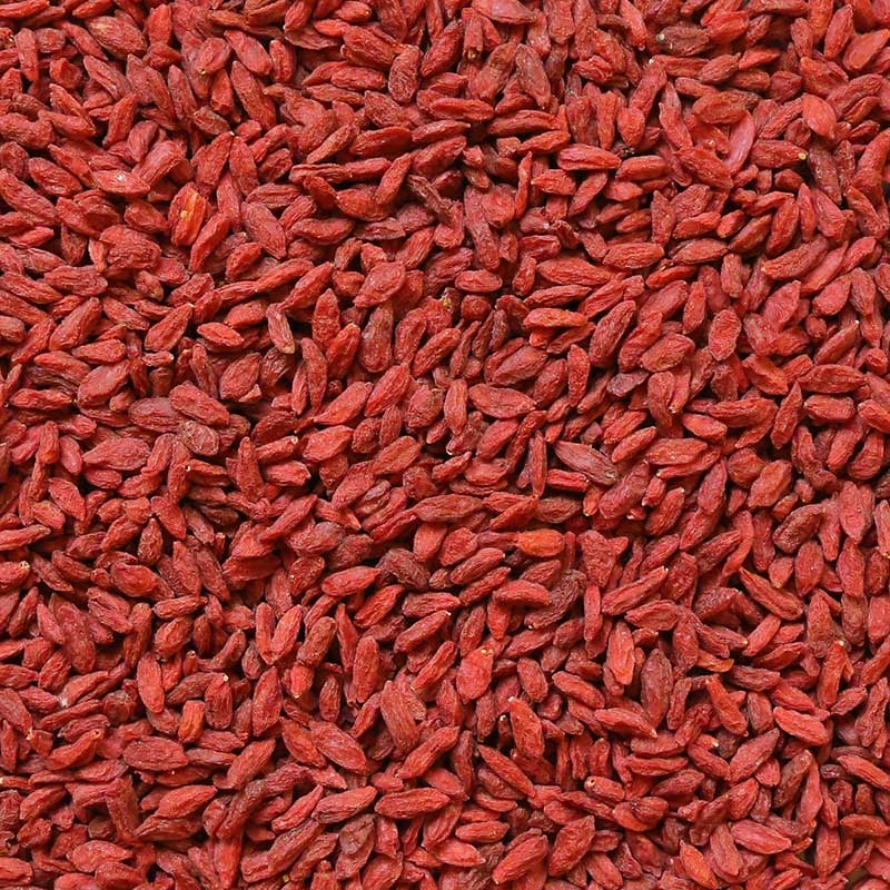 Organic Goji Berry Supplier Bata Food Turkey Netherlands Bahrain