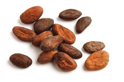 Organic and Conventional Cacao Beans Supplier BATA FOOD BV Netherlands