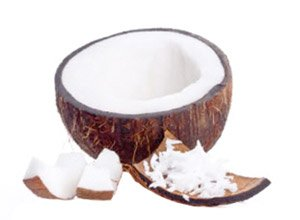 Organic and Conventional Desiccated Coconut Supplier BATA FOOD Netherlands Turkey Bahrain