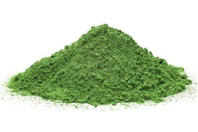 Organic & Conventional Barley Grass Juice Powder Supplier BATA FOOD Netherlands