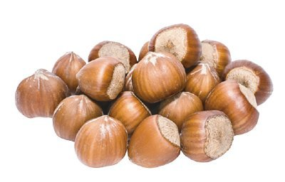 Organic Inshell Hazelnut Kernels Manufacturer Supplier BATA FOOD Turkey Netherlands Bahrain