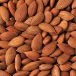 Sweet Apricot Kernels Natural Supplier Producer BATA FOOD Turkey