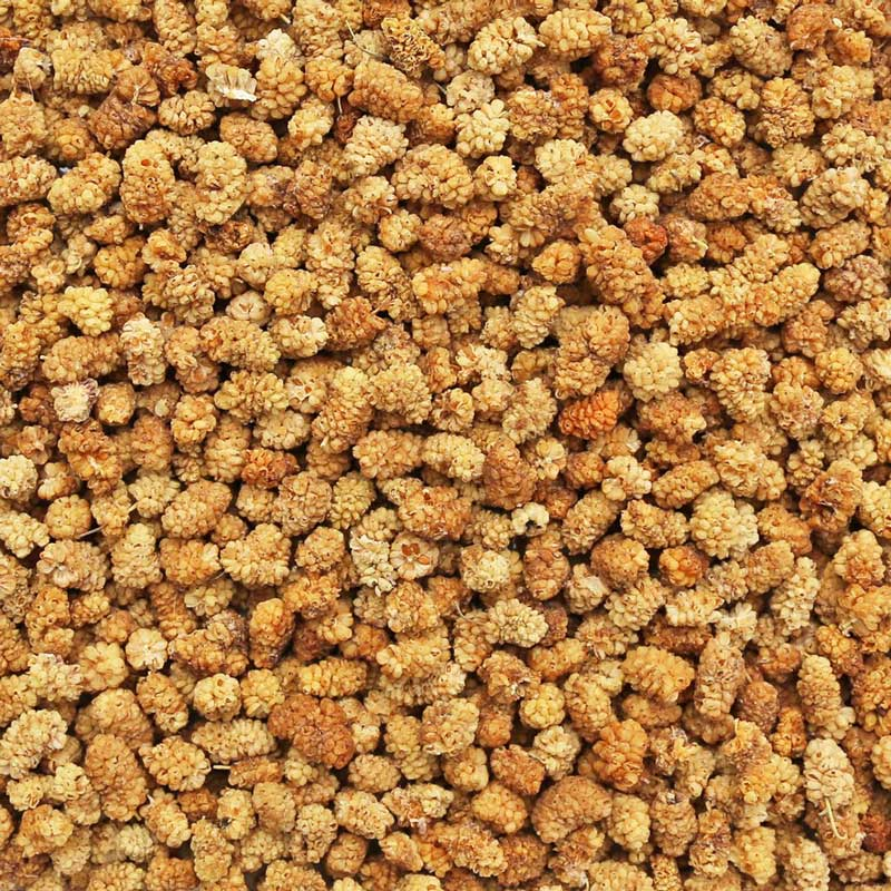 Organic Dried White Mulberries Supplier BATA FOOD Turkey Netherlands Bahrain