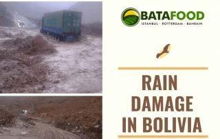 Rain Damage In Bolivia - Brazil Nut Processing Regions