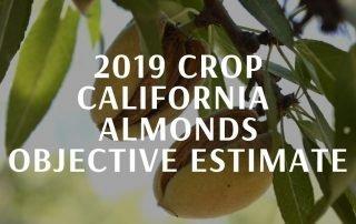 California Almond Objective Estimate Report 2019
