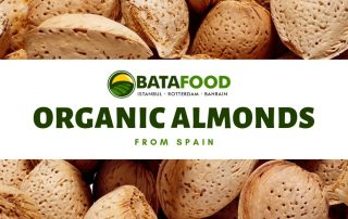 Organic Spanish Almonds Crop 2019 BATA FOOD BV Netherlands