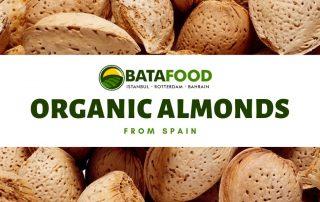 Organic Spanish Almonds Crop 2019 BATA FOOD BV Netherlands