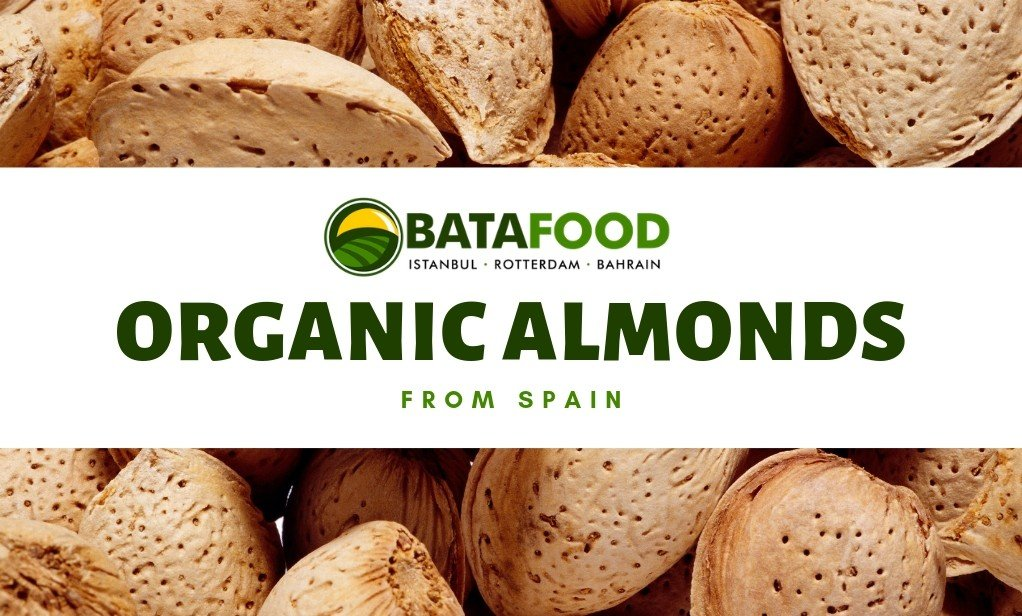 BATA FOOD - Suppliers of Organic Dried fruits, Nuts, Seeds and more