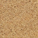 Organic Sesame Seeds Natural Bulk Wholesale Supplier BATA FOOD Netherlands