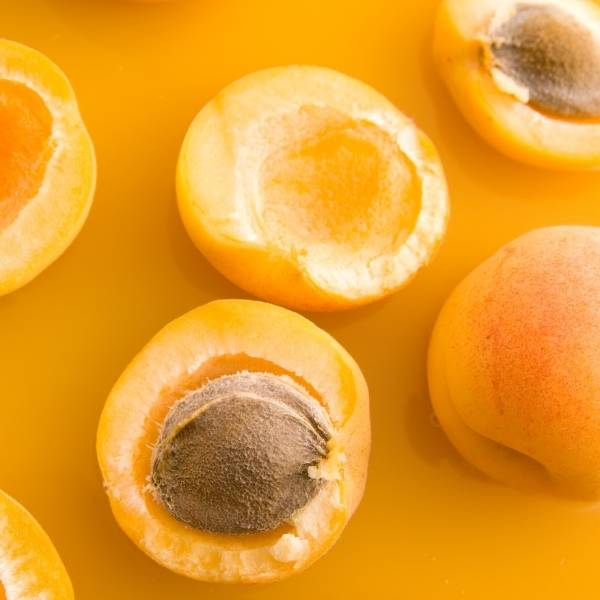 Apricot puree concentrate supplier BATA FOOD Turkey