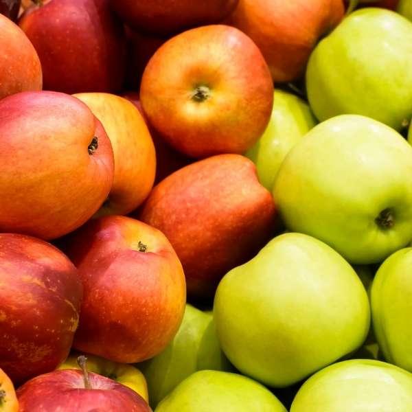 Apple puree concentrate supplier BATA FOOD Turkey