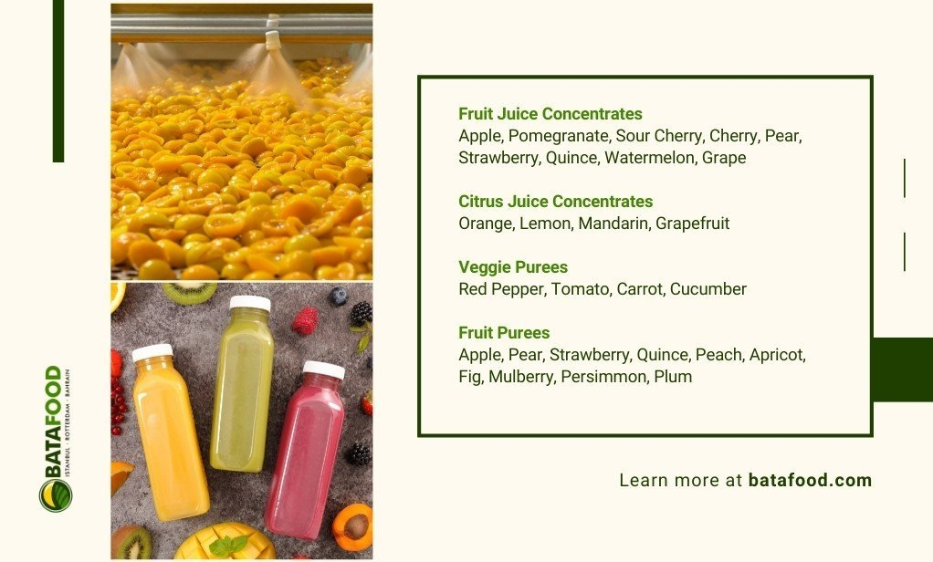 Bata Food Fruit Puree and Concentrates Supplier Turkey Netherlands