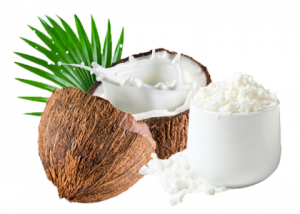 Organic Coconut Milk Powder Supplier Bata Food BV Netherlands