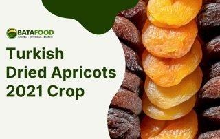 Turkish Dried Apricots 2021 Crop supplier BATA FOOD Turkey Netherlands Bahrain