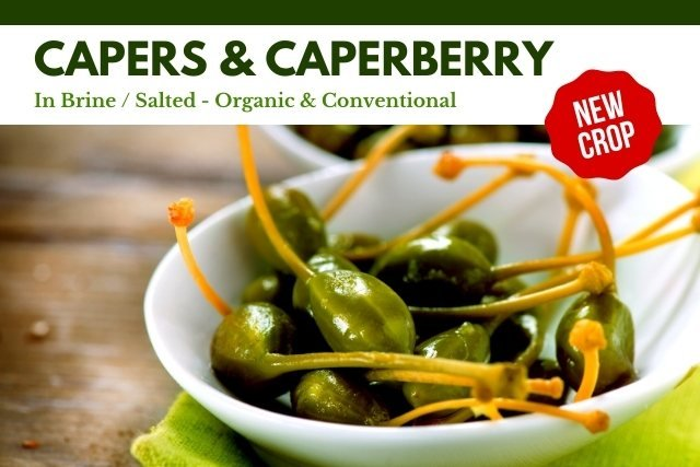 Capers Caperberry Salted in Brine Supplier Producer Factory BATA FOOD Turkey