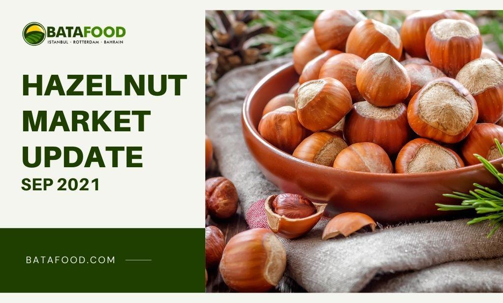 Hazelnuts Market Update Sep 2021 Supplier Exporter BATA FOOD